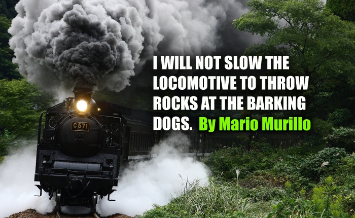 NEVER SLOW THE TRAIN TO THROW ROCKS AT THE BARKINGDOGS